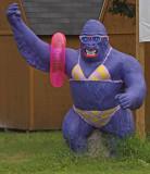 Purple Gorilla.jpg