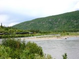 Train Along Nenana River