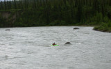 Kayaker on Nenana River