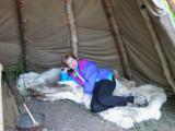 Lapland Bed