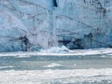 New Iceberg from Marjorie Glacier Calving