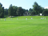 Cricket Match in Stanley Park