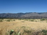 High Desert between Pheonix & Sedona, AZ.