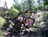 On Lava Flow Trail at Sunset Crater, Volcano National Monument