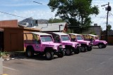 Waiting for Pink Jeep Tour