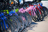 Colorful bikes for rent