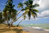 Playa Bonita, Las Terrenas, Samana, Dominican Republic.