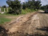 Peveto Woods Road Work