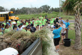 LSU Ag Center and St Martin Catholic School Volunteers