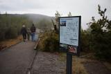 Norris Geyser Hike.jpg