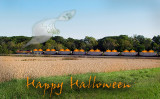 Pumpkin Train copy.jpg