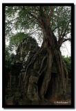 Collapsing Doorway, Angkor, Cambodia.jpg