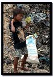Four Bananas, Steung Mean Chey, Cambodia.jpg