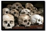 Victim's Skulls, Choeung Ek Killing Fields, Cambodia.jpg