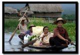 Four Ladies Paddling With Vegetables, Inle Lake, Myanmar