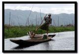 Inle Lake Traditional Leg Rower, Myanmar.jpg