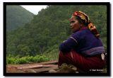 Pa-o Woman, Shan State, Myanmar.jpg