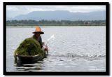 Splash, Inle Lake, Myanmar.jpg