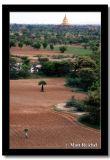 Living in Among the Ruins, Bagan, Myanmar.jpg