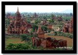 Trees and Brown Pagodas, Bagan, Myanmar.jpg