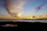 Lonely El Cerrito, Ca - February - 2008