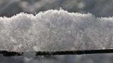 Snow on a twig closeup