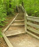 Stairs leading to East Hemlock Bluffs