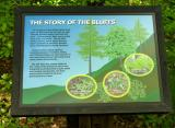 Story of the Bluffs sign