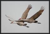 Pair flyby