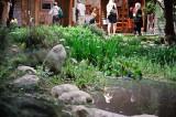 Venice Garden Walk