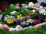 Gothic Glow Garden