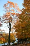 Lake George, NY 2008