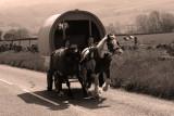 Horse and caravan