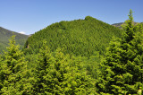 Cedar Mountain from Aldrich Butte