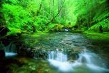 Henline Creek