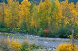 Hood River Falls Colors