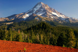 Mount Hood National Forest