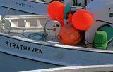 Fishing-Boats-at-North-Head Wharf