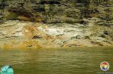 Cross bedded Alum Bluff Gp sediments Appalachicola Rv2.jpg