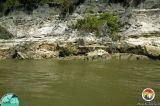 Log in Alum Bluff Group Appalchicola Rv2.jpg