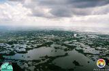Everglades western area near Broad Rv.jpg