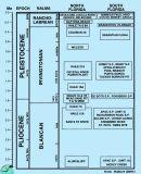 Mammal-chart-low-res.jpg
