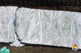 Arcadia Fm Hawthorn Gp Sunniland core Collier Co2.jpg