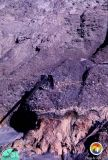 Arcadia Peace River Fm contact Polk Co mine.jpg