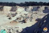 Carroll Pit Eocene.jpg