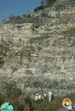 Fla-Mining-&-Materials-Pit Eocene-Oligocene.jpg