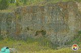 Karst features Vulcan Quarry Hernando co.jpg