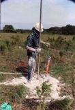 Explosive chrge lowered into hole.jpg