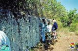 Key Largo Ls Windley Key State Park2.jpg