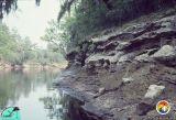 Outcrop 1981 Suwannee Rv E.jpg